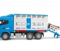 Scania R-serie veewagen met koe 2