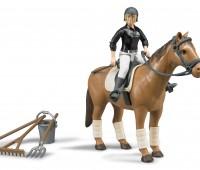 Paard en amazone 1