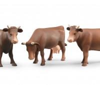 Bruine koe 1