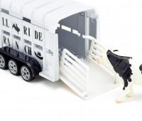 RAM 1500 met veetrailer en koe 3